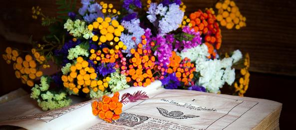 Ich sag´s Dir durch die Blume…